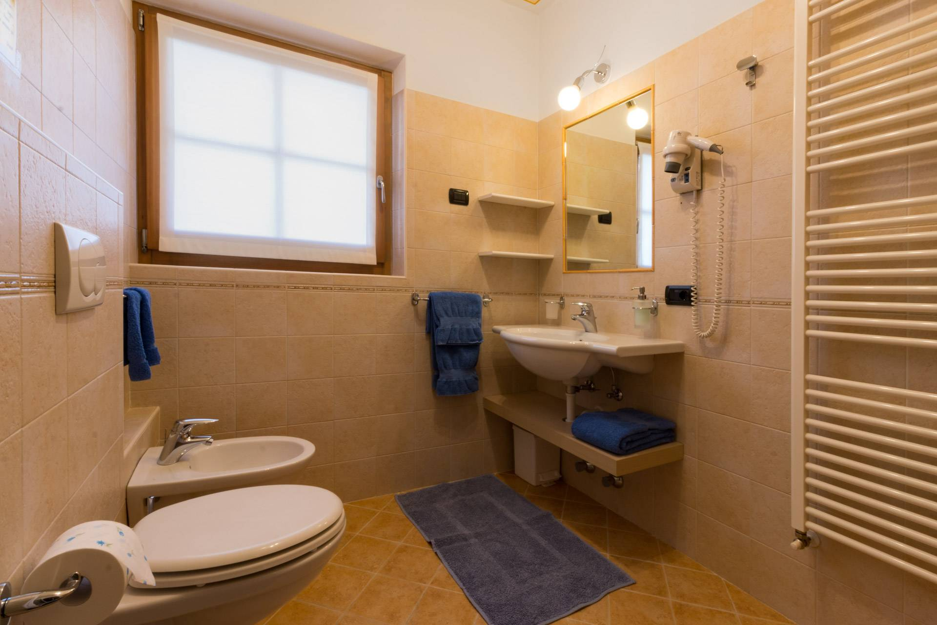 Bathroom with shower in Chalets Molin's apartments