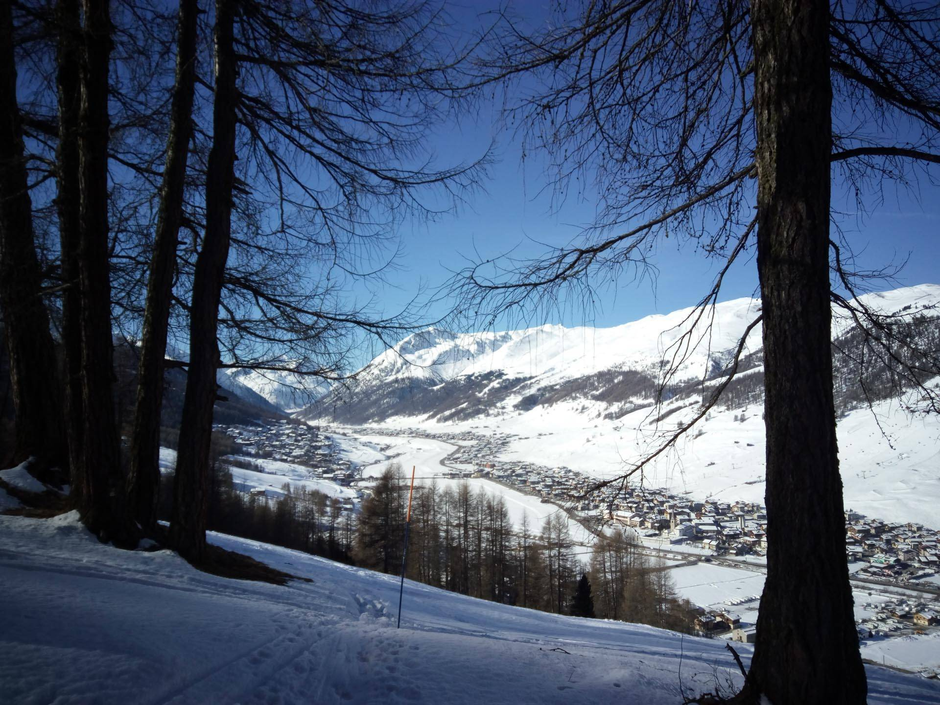 Your holidays in the mountains of Valtellina